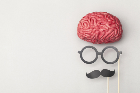 Human brain with comedy props Stock Photo