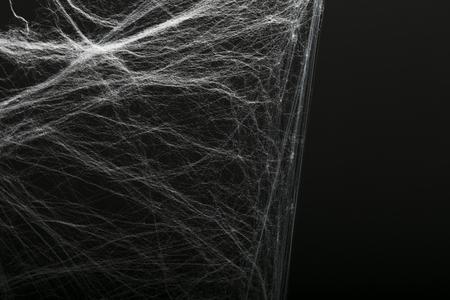 Halloween creepy cobweb spiders web with a black background Stock Photo