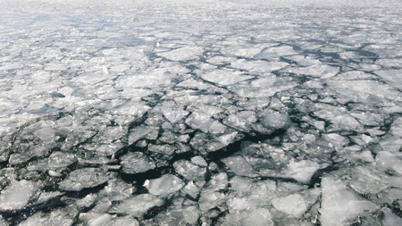 surface of the ocean covered in cracked and melting ice