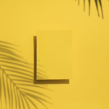Tropical palm leaf shadow on a yellow blank label. Exotic summer background. Stok Fotoğraf - 123231600