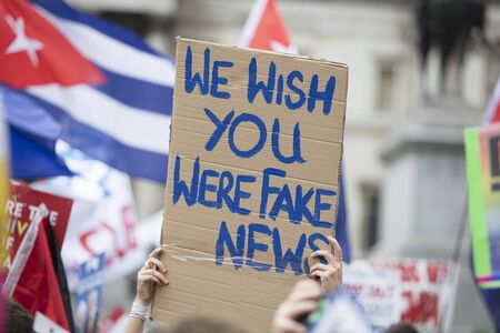 A protestor holds a political banner with you wish you were fake news message
