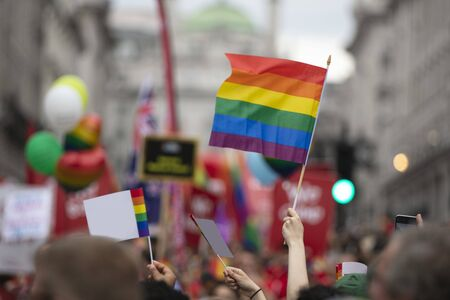 People wave LGBTQ gay pride rainbow flags at a pride event
