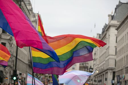 People wave LGBTQ pride rainbow flags at a pride event
