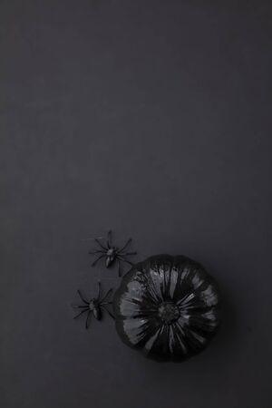 Black halloween pumpkins with spiders. Happy halloween overhead background