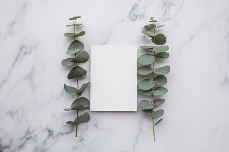 Blank white invitation stationery card with eucalyptus leaves.