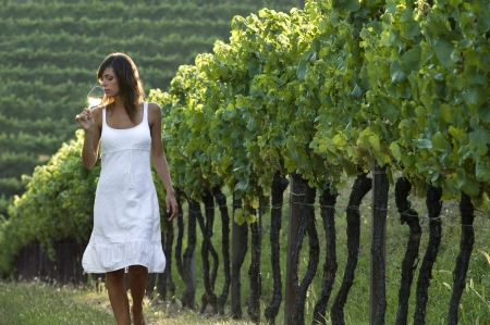 Young woman in vineyard sniffing wine glass