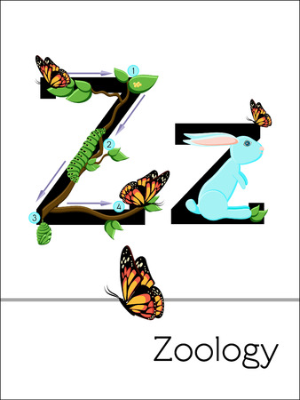 zoology: Flash card letter Z is for Zoology. Science alphabet for kids. Puzzle ABC flash cards series. Cartoon vector illustration in flat style.