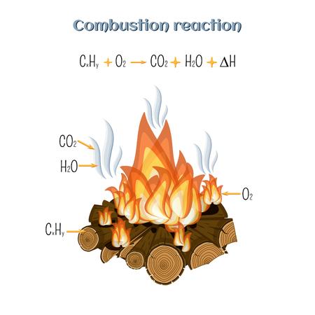 Reakcja spalania - spalanie drewna w obozie przeciwpożarowym. Ilustracje wektorowe