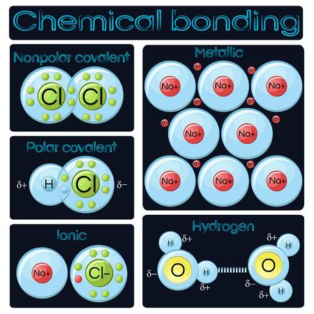 Soorten chemische binding. Vector illustratie.