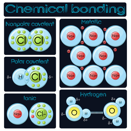 Types of chemical bonding. Vector illustration.