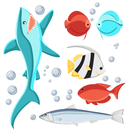 Cartoon style fish and water bubbles. Shark, sardine, discus, zebrasoma, butterfly fish, Isolated on white background.