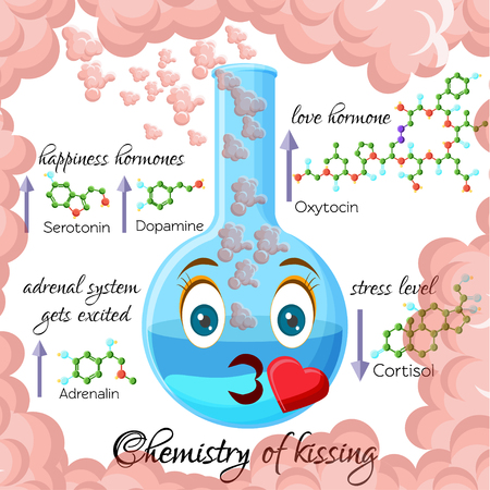 Chemistry of kissing cartoon style infographics with hormones that are released during kissing.