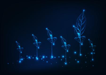 Campo agricolo con nuovi germogli. concetto di agricoltura. Sfondo wireframe basso poli incandescente su blu scuro. Illustrazione vettoriale. Vettoriali