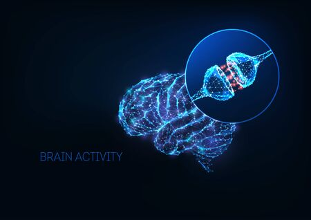Futuristic brain activity concept with glowing low polygonal human brain and neuron synapses isolated on dark blue background. Nervous system, neurology. Modern wire frame mesh design vector image.