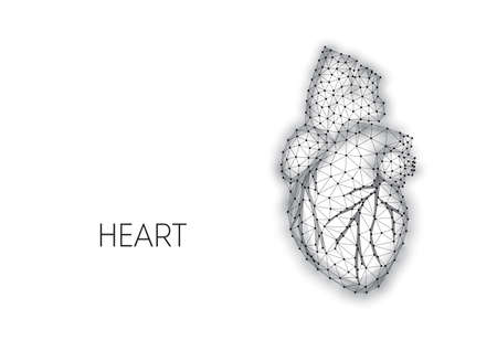 Polygonal anatomical human heart made of black lines and dots isolated on white background. 일러스트