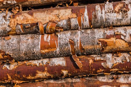 Stack of wood logs. Wood storage for industry. Felled tree trunks. Firewood cut tree trunk logs stacked prepared. Deforestation for Industrial production.