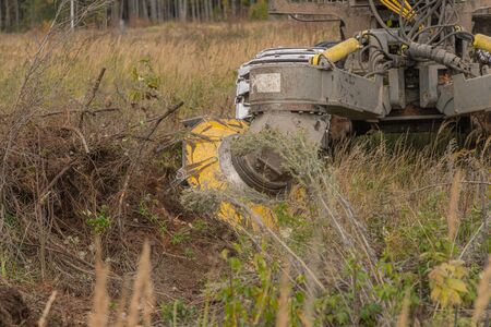 Forest restoration harvester makes furrows for planting spruce pine seedlings. Reforestation on the planet. Working process of planting tree after deforestation for Industrial production.