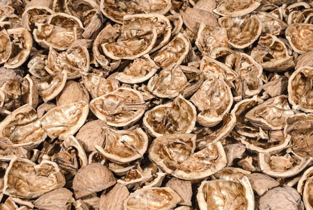 hard: Background of walnut shells Stock Photo