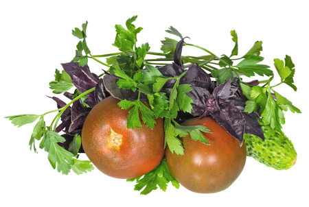 Fresh vegetables and greens for salad