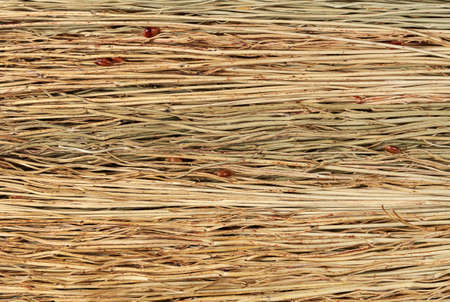 Broom stalks texture. Backgrounds and textures