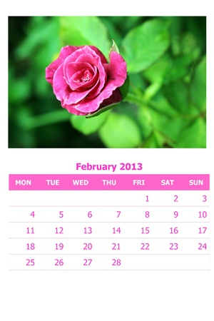 2013 calendar  Stock Photo - 16835400