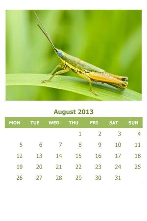 2013 calendar Stock Photo - 16835360