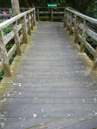 sandakan: wooden bridge, sepilok, sandakan, sabah Stock Photo