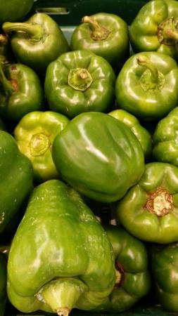 capsicum: Fresh capsicum