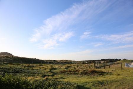 grassland in Australia  Stock Photo