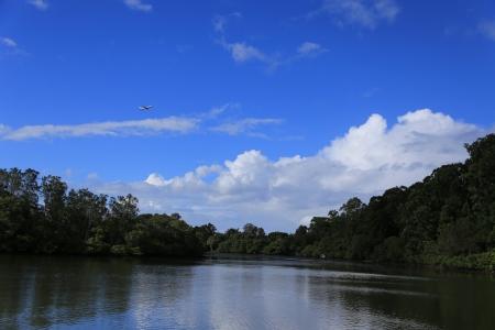 Lake under sunny sky