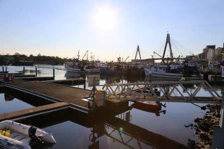 Pier in Fisherman Market, Sydney, Australia Editorial