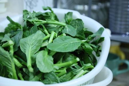 Fresh Vegetable in a basket