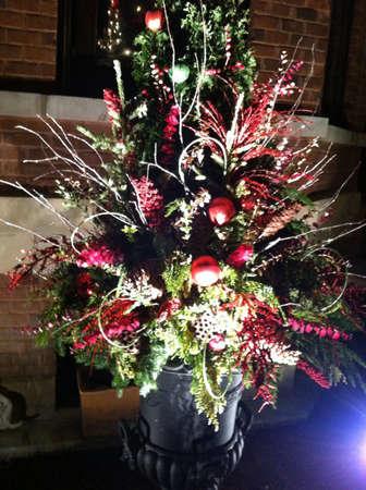 illuminated: Illuminated Christmas tree  Stock Photo