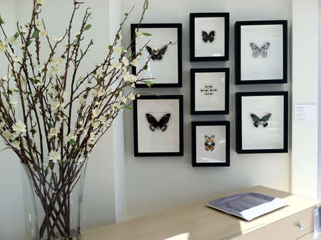 Home decorated with framed butterflies