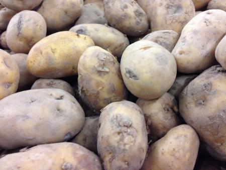 russet: Russet potatoes