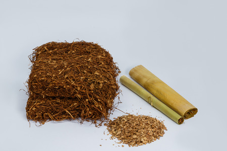cheroot: Tobacco with cheroot and cigarette