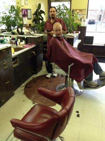 haircutting: Barber cuts hair Stock Photo