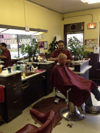 barber: Barber cuts hair Stock Photo