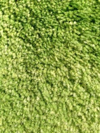 green carpet: Green carpet Stock Photo