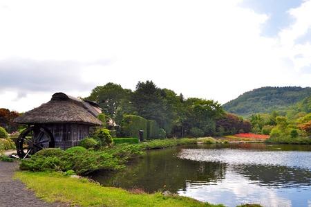 springwater: oshino hakkai  eight springs  large pond and flowers
