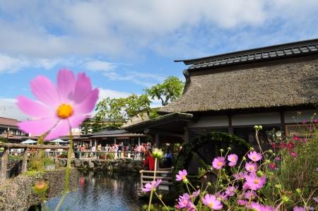 molino de agua: Oshino Hakkai, Jap�n, Yamanashi, 16 de septiembre 2013 estanque de agua dulce y molino de agua