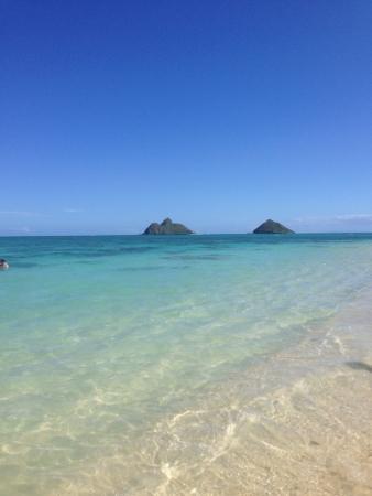 オアフ島の美しい海 写真素材 - 24734461