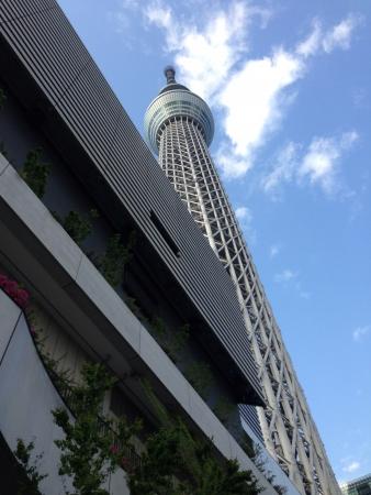 sumida: Skytree, sumida tokyo