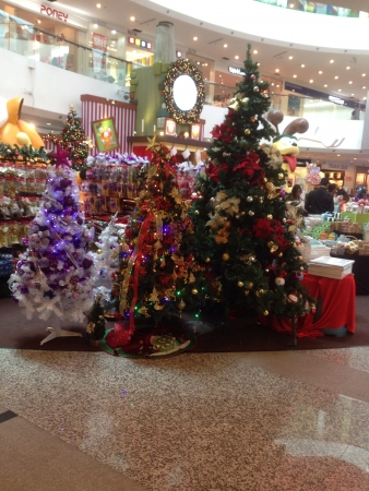 Preparation for the Christmas holidays 2013