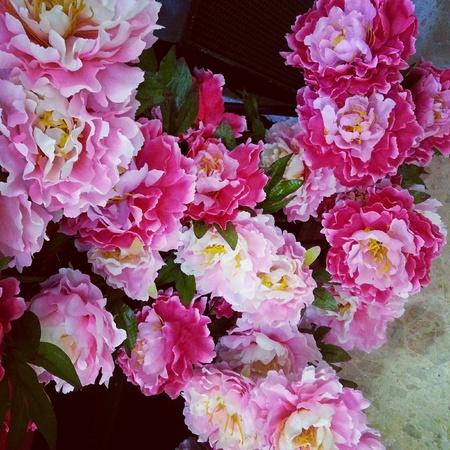 Pretty pink artificial flowers royalty free stok fotoraf resimler pretty pink artificial flowers royalty free stok fotoraf resimler grseller ve stok fotoraflk image 25947464 mightylinksfo