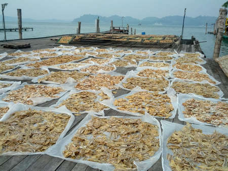 alots of salted fish and nice sea view Stock Photo