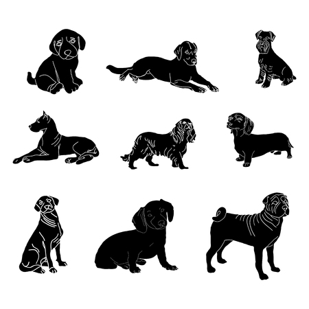 labrador: Vector silhouettes of dogs of different breeds.