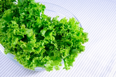 large glass bowl with a bundle of fresh green leaf salad on the table  close-up Stock Photo - 13637258