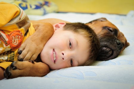 funny love: little puppy bullmastiff sleep with boy in the house Stock Photo