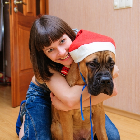 young woman and a bullmastiff puppy played in the apartment. red Santa Claus hat wearing on the dog photo